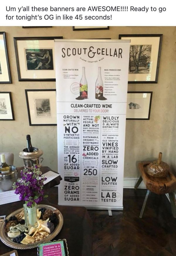 Scout & Cellar Tall Retractable Banner